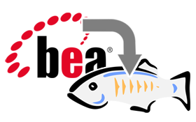 bea_migration_small